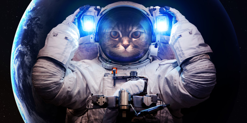 'Professor Astro Cat' Educational App Makes Science Learning Fun